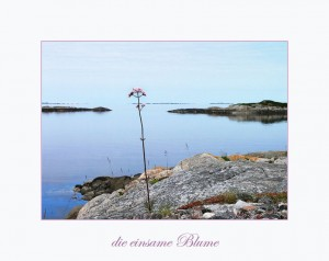 013-Norw--Ælesund-P1050766 Kopie